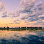 Okavango Delta Panhandle: Everything To Know